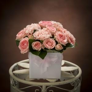 B2-Rose